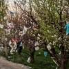 ردپای مرگبار گردشگران پلاستیکی