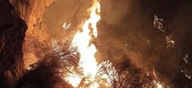 آتش بیتوجهی دولتها به جنگل