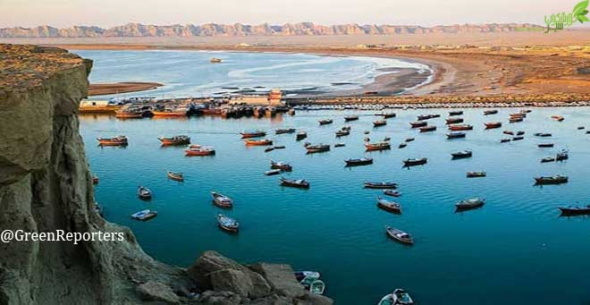آبزیان در محاصره ۱۶۰۰۰ قایق غیرمجاز